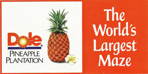 pineapple.4.jpg